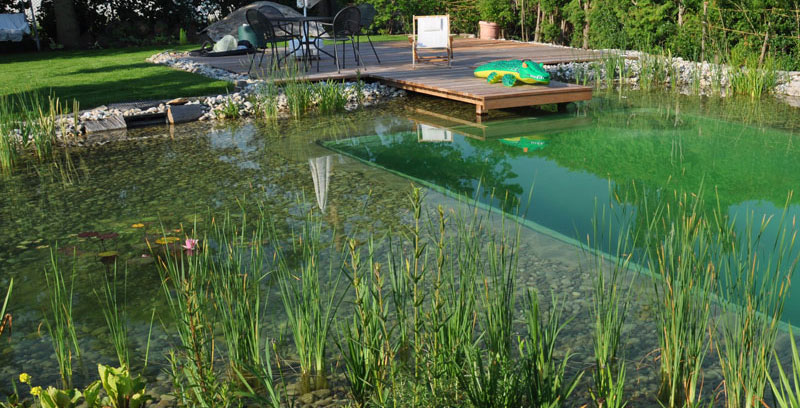 Aquatic Schwimmteich